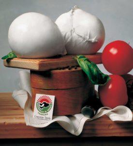 Fonte: Consorzio tutela mozzarella di bufala campana Dop
